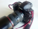 Canon 1Ds Mk2 - Dinosaur from 2005
