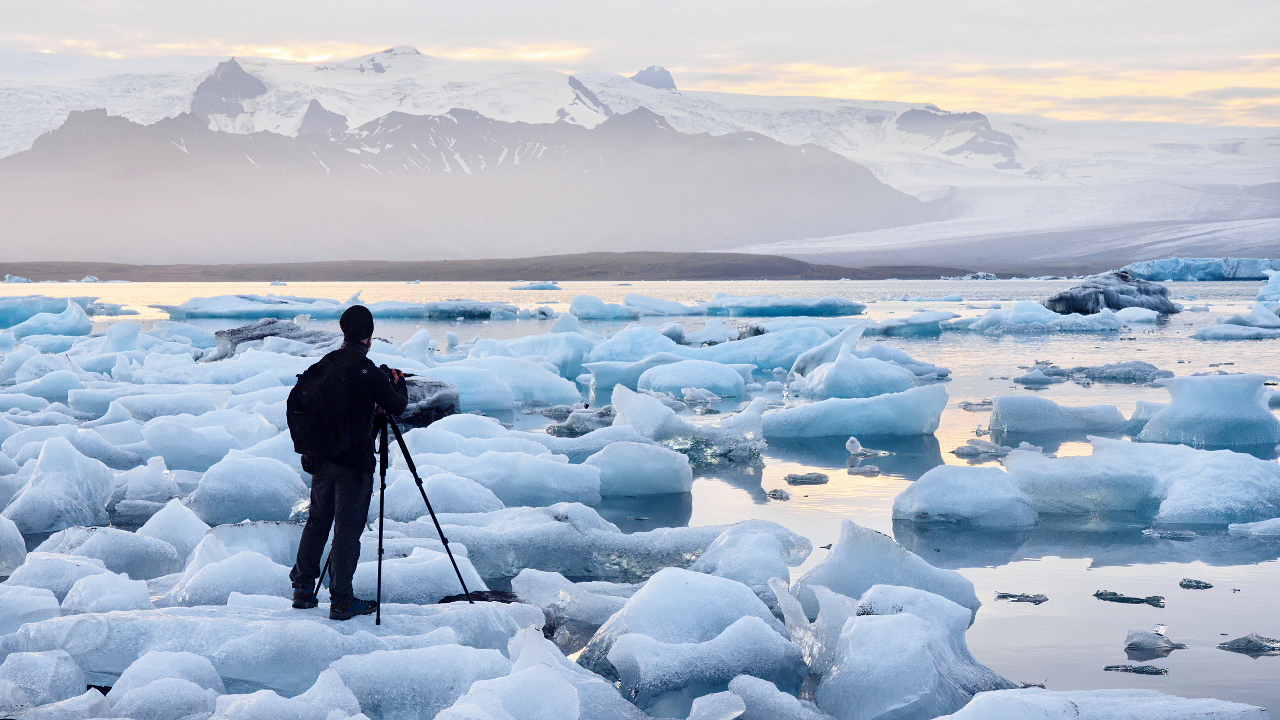 The Arctic Photographer
